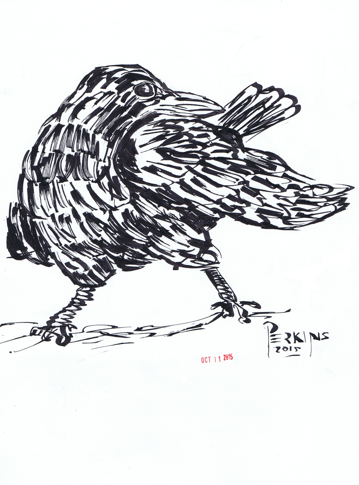 Inktober Day 11 Crow